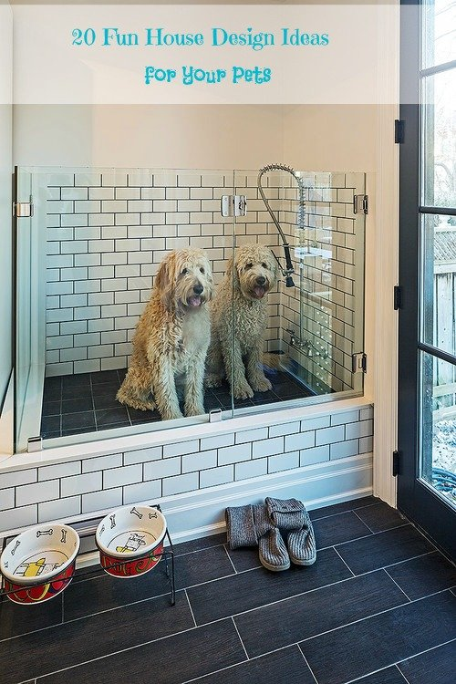 20 Fun House Design Ideas for Your Pets. Pet shower, ped beds, pet feeding stations - Housekaboodle