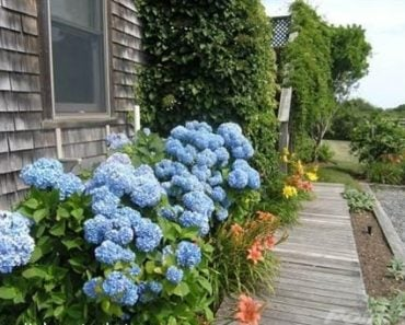 House in Nantucket for sale