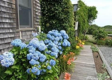 Nantucket Nest For Sale