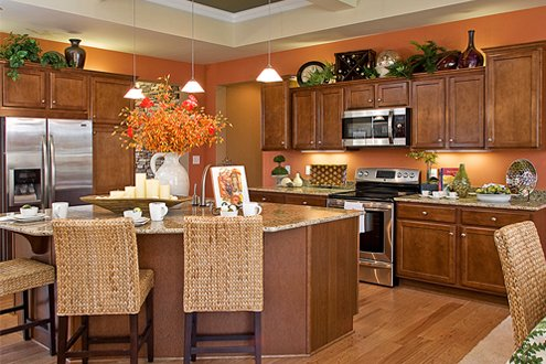Custom Home Builder's kitchen design