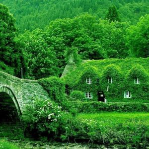 Fairytale Cottage in England