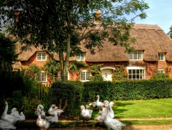 Village of Longstock Hampshire, England via vintagerosegarden.tumblr