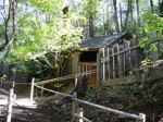 Oregon Vortex House Defies Quantum Physics