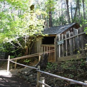 Mysterious Oregon Vortex house defies quantum physics