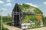 Is This Anything?  The Incredible Edible Shed