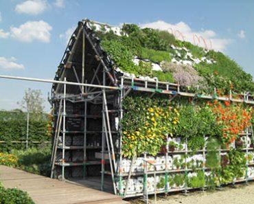 Edible garden shed