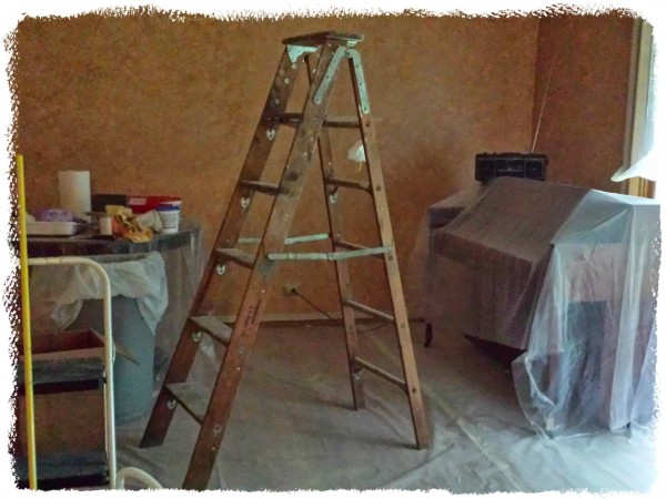 Dining Room Project Step One Painting 2