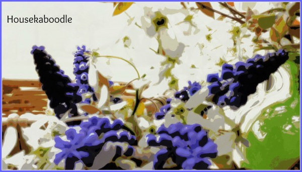 Watercolor of Grape Hyacinths