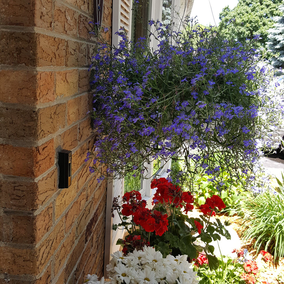 Front door curb appeal idea with flowers - Housekaboodle