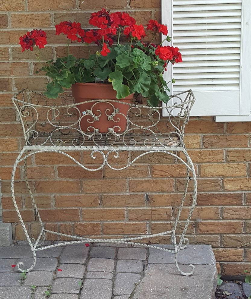 Geranium on the front porch adds a pop of color for curb appeal - Housekaboodle