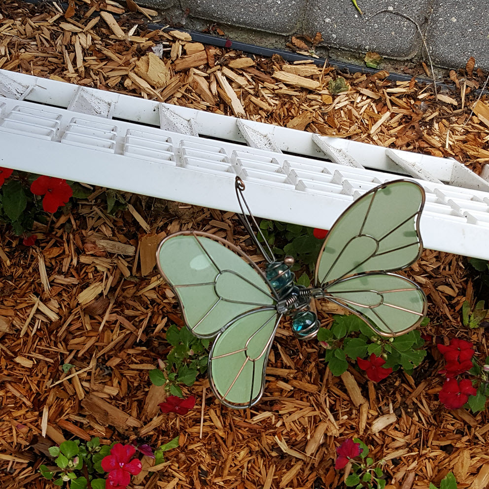 Garden dragonfly - Housekaboodle