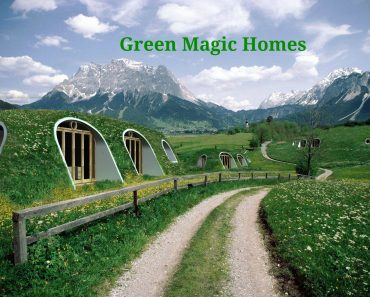 Geen Magic Homes are modern day whimsical Hobbit Houses