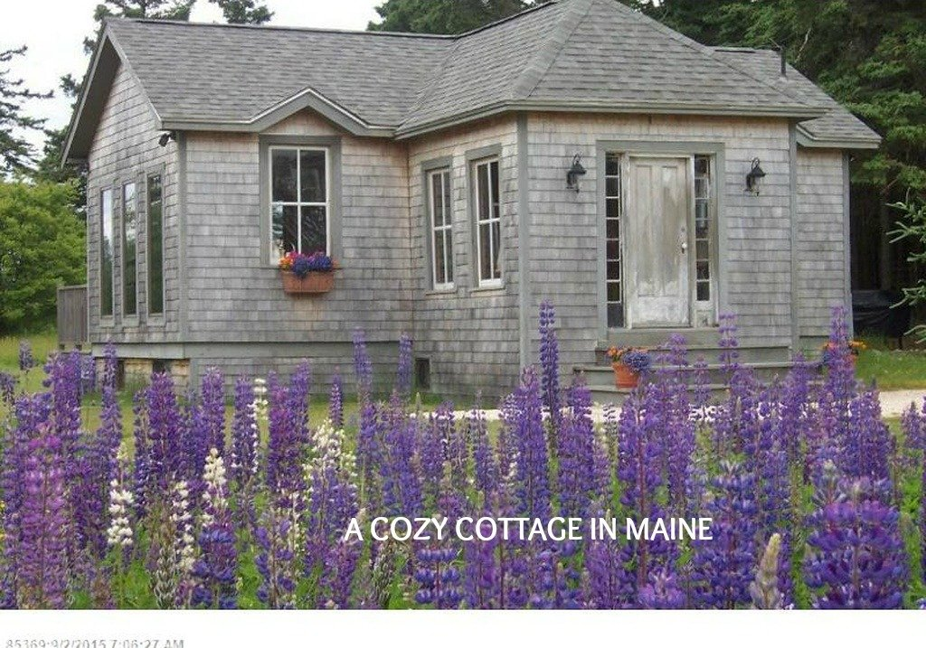 A Tiny Shingled Cottage For Sale in Maine called Heron Cottage at Crockett Cove