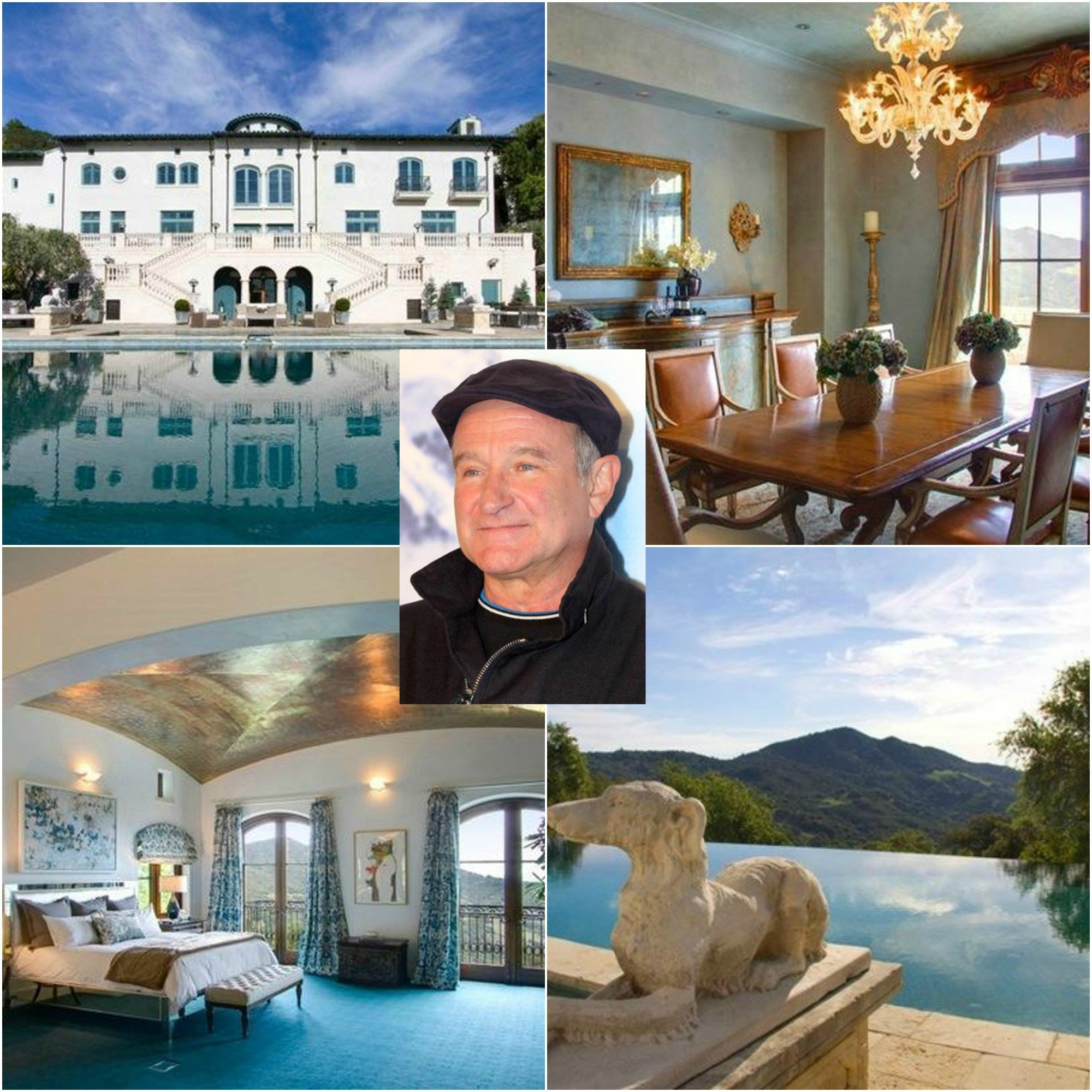 I wish I could buy Robin Williams Napa Valley Villa Estate for sale that sits on over 600 acres and has a working vineyard, barn, spring-fed pond and is the best Villa in Napa Valley