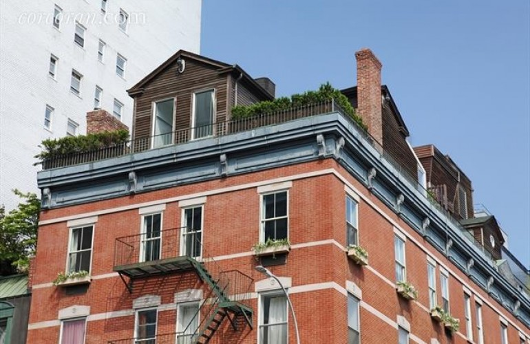 Rooftop Cottage On Top of NYC Condo