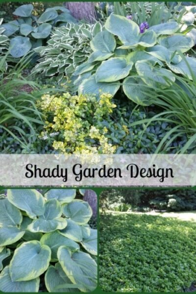 Shady Garden Design