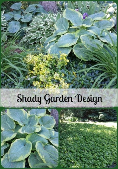 Our Garden Design With Hosta And Ground Cover