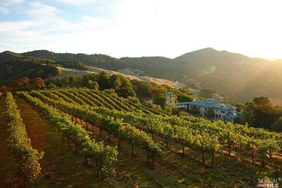 Vineyard on Robin Williams estate on the market
